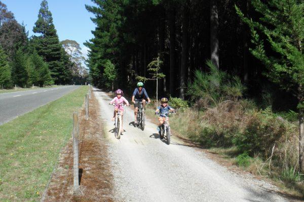 Rabbit island bikes