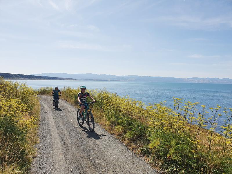South Coast Rimutaka Cycle trail goRide