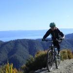 The protection you need - womens mountain bike saddle & 3/4 padded pant
