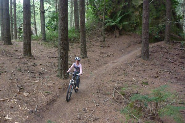 Single Track.  Rotorua Mountain Biking. goRide