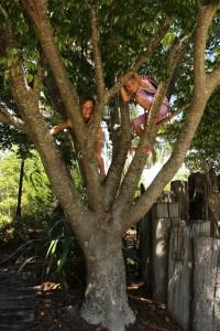 Atawhai shared pathway nelson tree climbing Miyazu Park goride