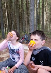 Oranges. Taupo. goRide