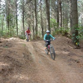 Tourist Trap. Taupo Mountain Bike Park. goRide