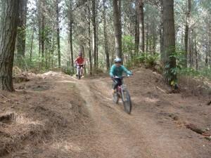 Tourist Trap. Taupo Mountain Bike Park. goRide