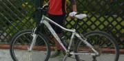 Comfort or trail bike