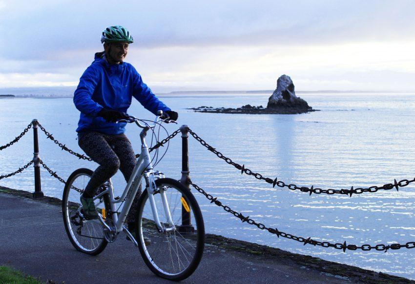 mountain bike size guide nz