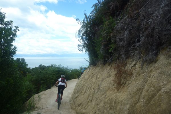 Easy Rider.  Kaiteriteri Mountain Bike Park with kids