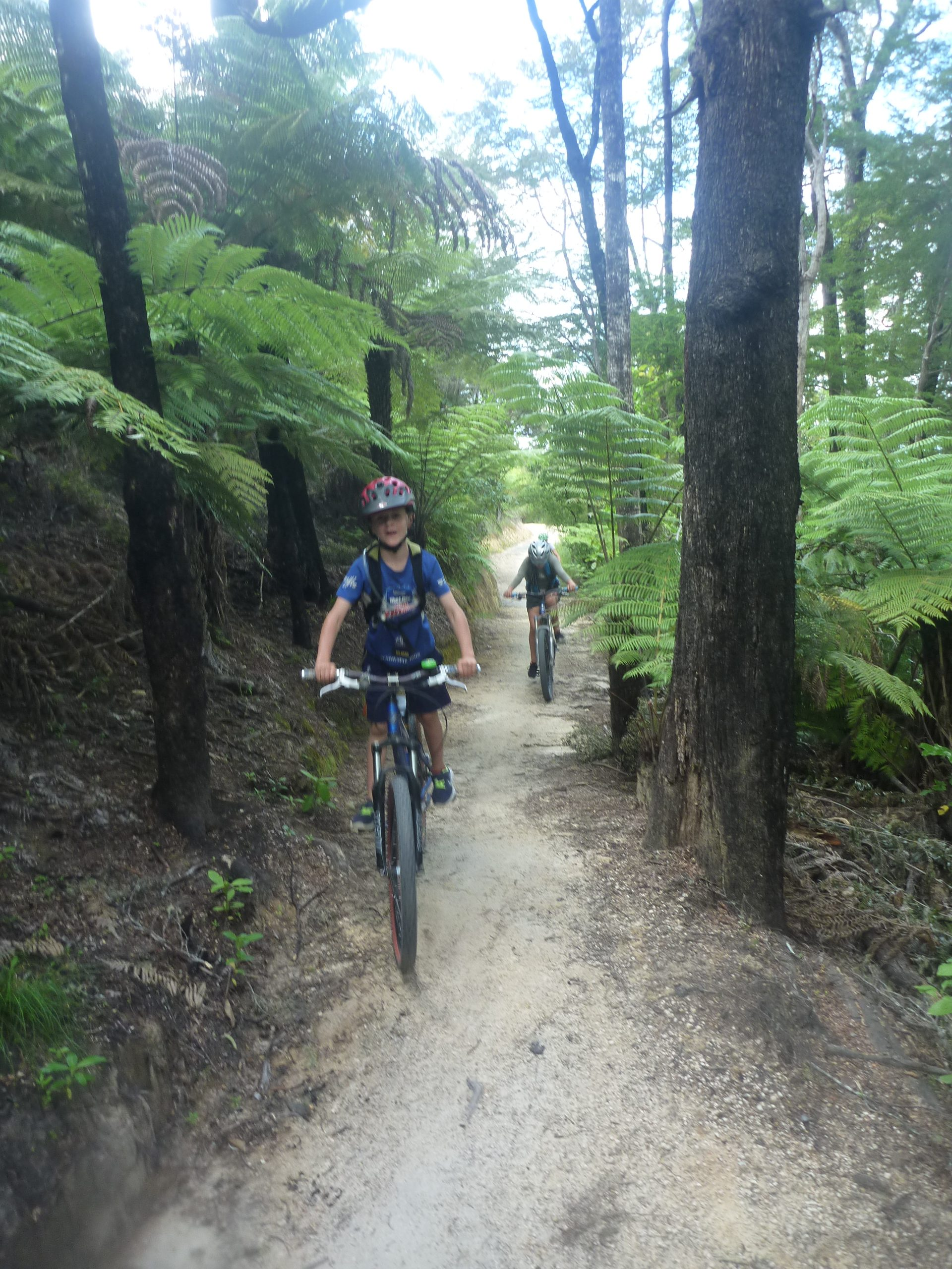Kaiteriteri Mountain Bike Park with Kids