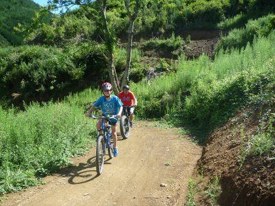 Encouragement from Dad to climb Tasman Journeys.  Codgers Mountain Bike Park with kids