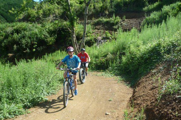 Encouragement from Dad to climb Tasman Journeys.  Codgers Mountain Bike Park with kids