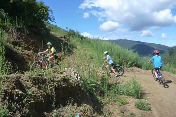 One of the many switchbacks on Tasman Journeys climbing track.  Codgers Mountain Bike Park with Kids
