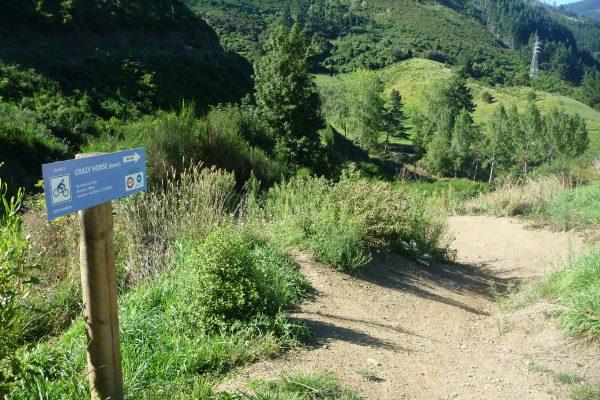Entrance to Lower Crazy Horse. Codgers Mountain Bike Park. goRide