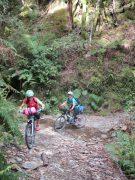 Tour riding comfort - endurance saddle & 3/4 padded pant combo