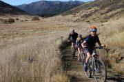 Bike Locks for Family & Group Riding