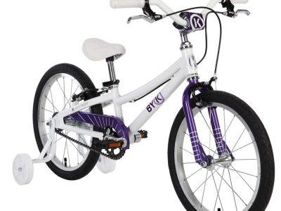 Byk 350 Purple
