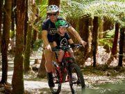 MTB Seat & Helmet - easy trail riding