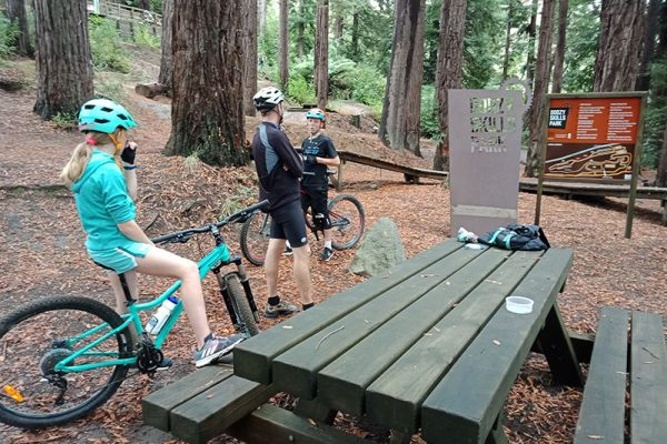 Dodzy Skills Park Rotorua Mountain Biking goRide