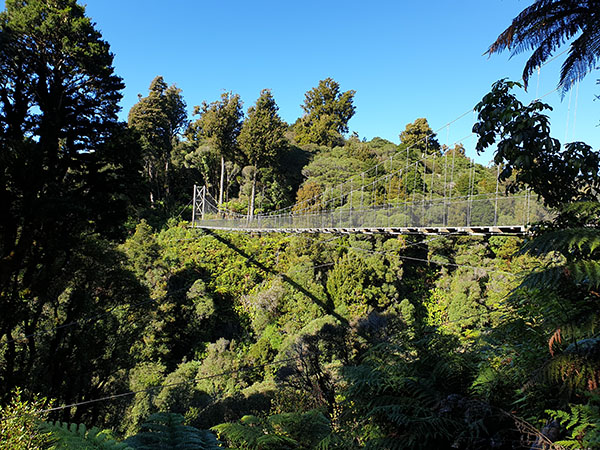 View of the swing bridges Timber Trail resized
